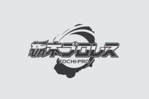 本日! 栃木プロレス定期戦~DREAM 2~イメージ